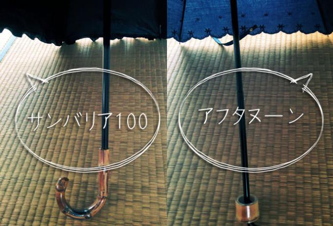 IMG_20150421_日傘比較_1
