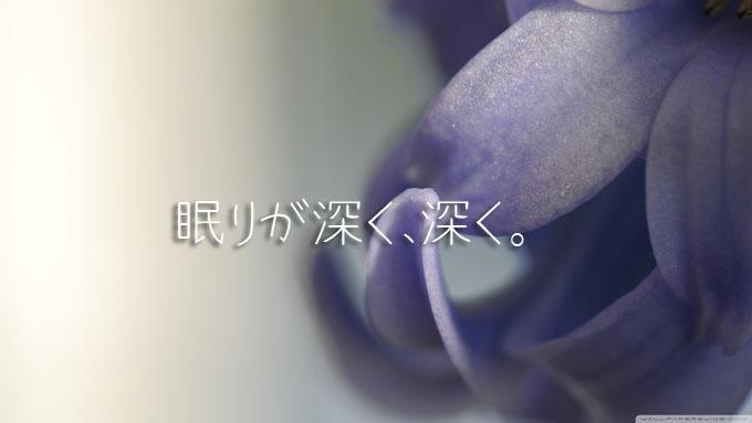 hyacinth_macro-wallpaper-1600x900