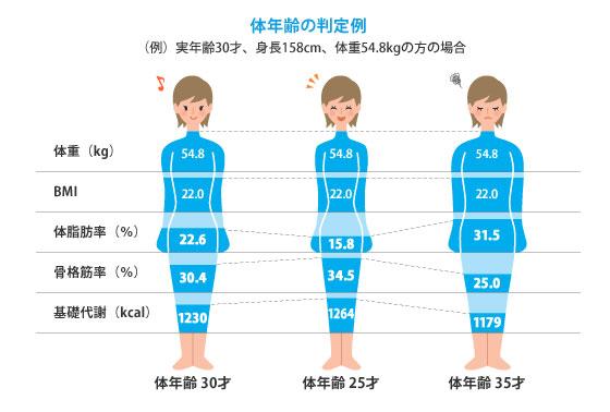 オムロン体重体組成計でわかること
