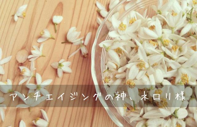 ネロリ ビターオレンジ 花