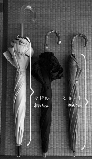 芦屋ロサブランとサンバリア100の日傘