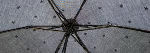 アフターヌーンティ日傘