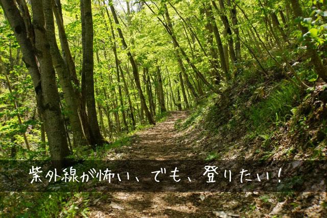 山イメージ画像