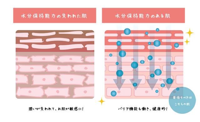 お肌の比較__水分保持機能_ライースリペア_ライスフォース